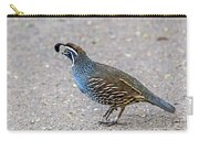 California Quail Carry-all Pouch by Kate Brown