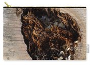 Canal Stumps-018 Carry-all Pouch