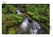 Cascades Of Lee Falls Carry-all Pouch