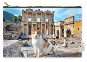 Cat In Front Of The Library Of Celsus Carry-all Pouch