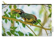 Chestnut-eared Araacari Carry-all Pouch