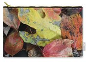 Collective Autumn Color Carry-all Pouch