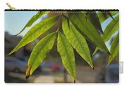 Colors Of The Neighborhood 15 Carry-all Pouch