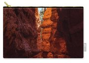 Crimson Crevice Carry-all Pouch