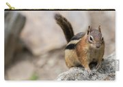 Curious Chipmunk Carry-all Pouch