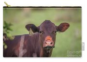 Curious Cow #636 Carry-all Pouch by Tom Claud