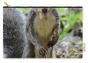 Cute Squirrel Carry-all Pouch