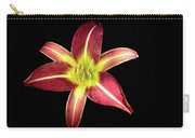 Daylily On Black Carry-all Pouch by Alison Frank