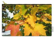 Days Of Autumn 24 Carry-all Pouch