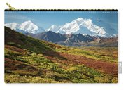 Denali Autumn Carry-all Pouch by Tim Newton