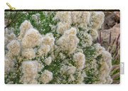 Desert Broom V1804 Carry-all Pouch by Mark Myhaver