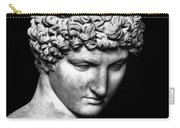 Detail Of Antinous  Carry-all Pouch
