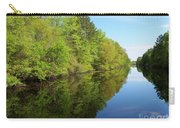 Dismal Swamp Canal In Spring Carry-all Pouch