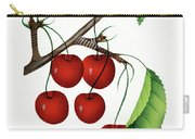 Early Richmond Cherries Carry-all Pouch