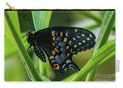 Eastern Black Swallowtail - Closed Wings Carry-all Pouch