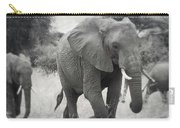 Elephant And Babies Carry-all Pouch