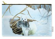 Ermine Carry-all Pouch by Michael Chatt