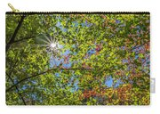 Fall Beginnings Carry-all Pouch