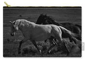 Freedom Carry-all Pouch by Catherine Sobredo