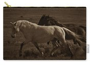 Freedom II Carry-all Pouch by Catherine Sobredo