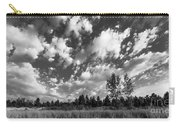 Good Harbor Shoreline Black And White Carry-all Pouch
