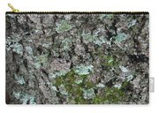 Gray Treefrog - 8522-2 Carry-all Pouch