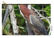 Green Heron In The Glades Carry-all Pouch