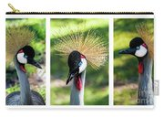 Grey Crowned Crane Gulf Shores Al Collage 2 Triptych Carry-all Pouch