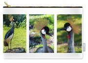 Grey Crowned Crane Gulf Shores Al Collage 6 Triptych Carry-all Pouch