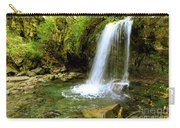 Grotto Falls On Trillium Gap Trail In Smoky Mountains National Park Carry-all Pouch