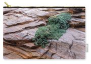 Growing From The Rock Terrain In Zion  Carry-all Pouch