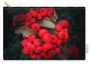 Happy Berries Carry-all Pouch