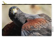 Harris Hawk 1 Carry-all Pouch