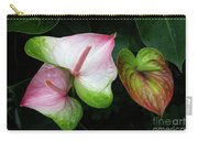 Hearts Together Carry-all Pouch