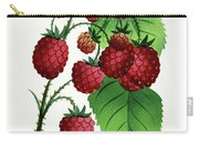Hepstine Raspberries Hanging From A Branch Carry-all Pouch