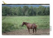 Horse Print 900 Carry-all Pouch
