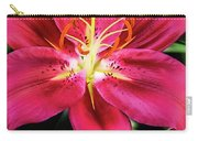 Hot Pink Day Lily Carry-all Pouch