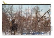 In Ninilchik A Moose Grazes In The Village In Late Winter Carry-all Pouch