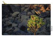 Joushua Sunset 1 Carry-all Pouch