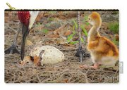 Just Hatching Carry-all Pouch