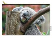 Koala Catching Zs Carry-all Pouch