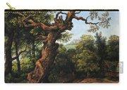 Landscape After A. Van Everdingen Carry-all Pouch