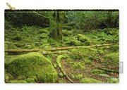 Landscape At Torc Waterfalls Carry-all Pouch