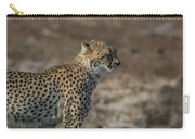 LC5 Carry-all Pouch by Joshua Able's Wildlife