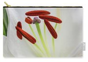 Lily Casa Blanca 3 Carry-all Pouch