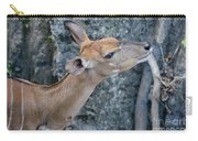 Lowland Nyala Carry-all Pouch