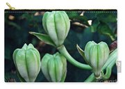 Madonna Lilies Carry-all Pouch