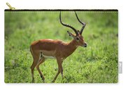Male Impala Crossing Grassland With Tongue Out Carry-all Pouch