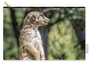Meerkat Alert Carry-all Pouch by Kate Brown
