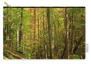 Meigs Creek Trailhead In Smoky Mountains National Park Carry-all Pouch